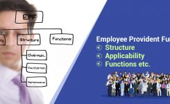 EPFO: Structure, Applicabilty, Functions, Services,etc.