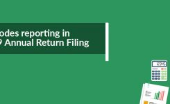 HSN Codes reporting in GSTR 9 Annual Return Filing