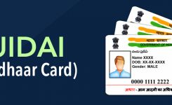 UIDAI Official Website Guide